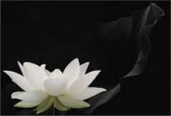 THẾ GIAN TỊNH NHÃN - Phẩm 1 (Phần 1)